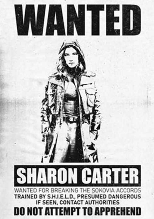 Sharon Carter Falcon and The Winter Soldier