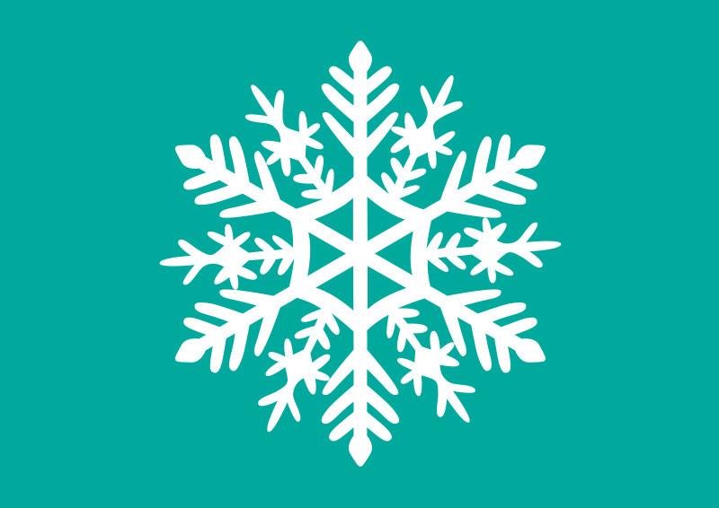 White Snowflake Vector Illustration