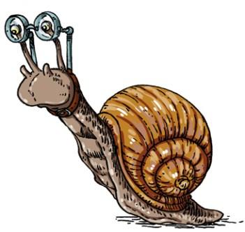 escargot-3-copie