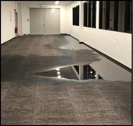 28 las vegas water damage restoration company repairs removal Property restoration Services 4