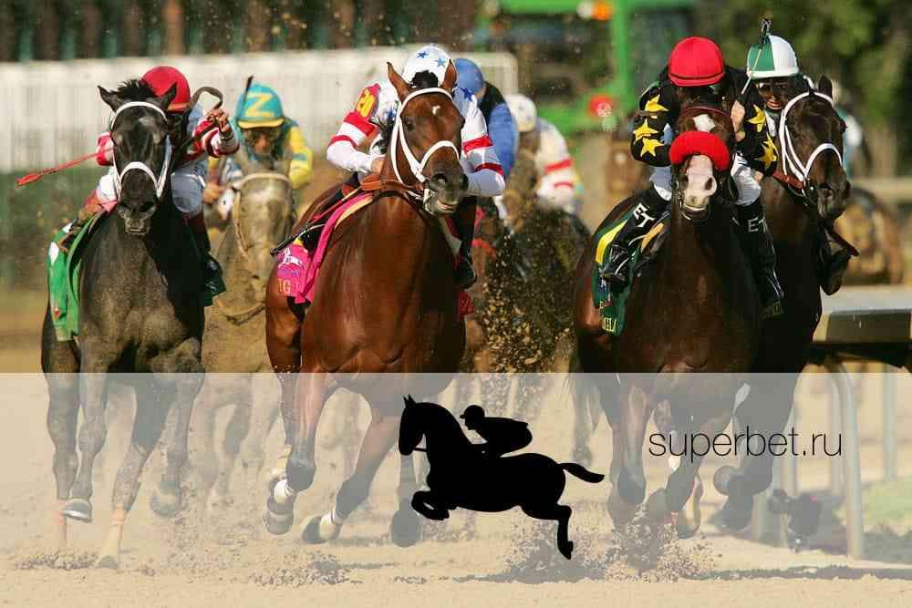 Ставки на лошадиные скачки онлайн с в видео точные прогнозы на спорт форум