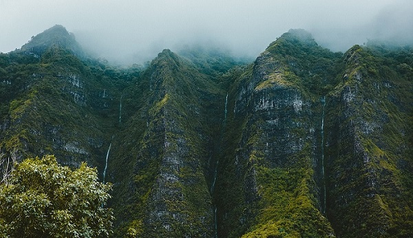 Mountains in fog - how to handle employees refusing to do the work