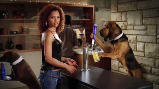 2011_bud_light_dog_sitter