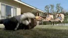 "2008 Pepsi Super Bowl Ad ""Every Sip"""