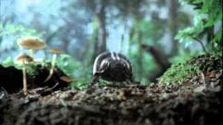 """Volkswagen 2011 Super Bowl XLV Commercial Teaser """"Black Beetle"""" [VIDEO]"""