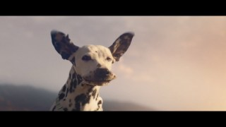 2019 BUD LIGHT - Special Delivery -