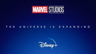 2020 MARVEL STUDIOS – Disney+