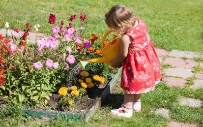 aguando as plantas