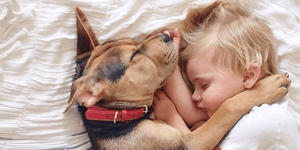 El cachorro y los niños