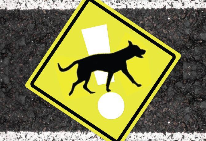 Cuidado al conducir…