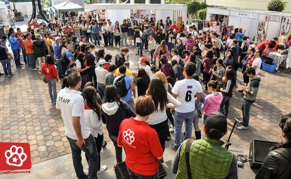 EstacionConsultaMarzo SuperCachorros2015 8
