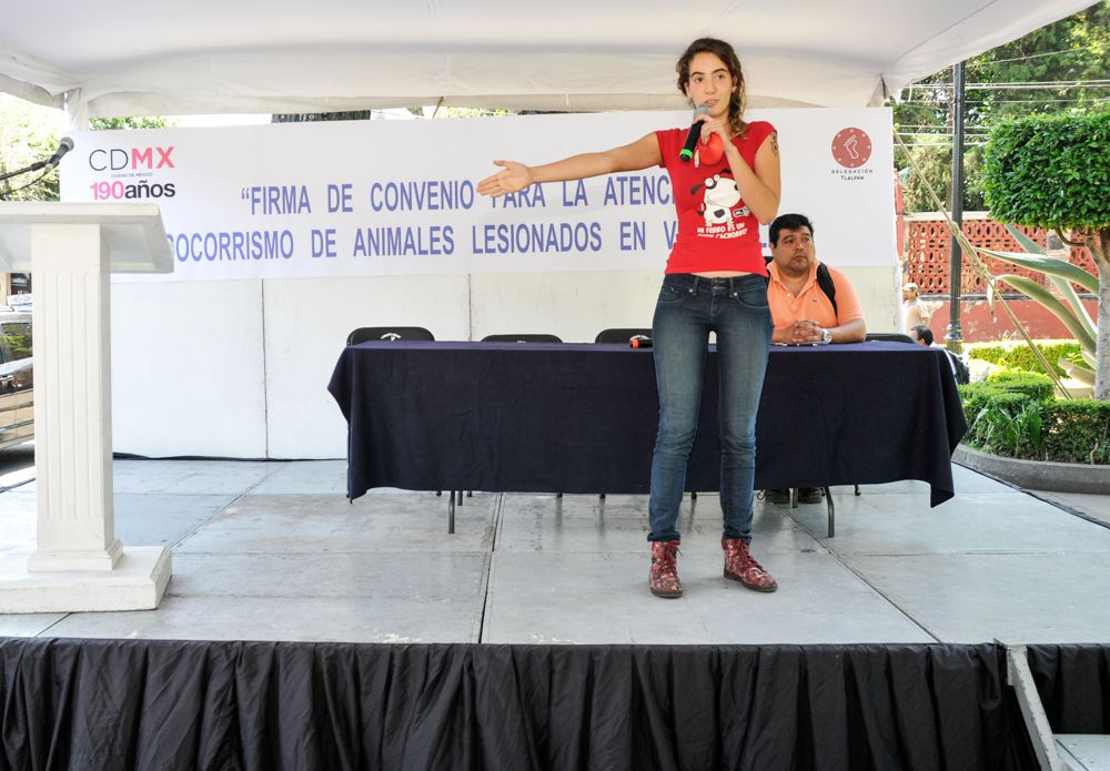 FundacionSuperCachorros 26