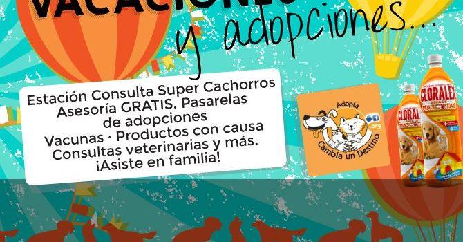Adopciones Portada1