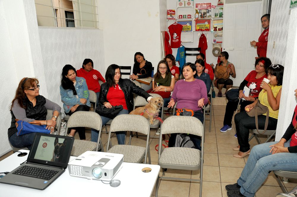 BrigadaSuperCachorros Reunion01 2