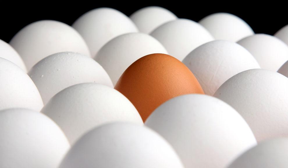 Semana Mundial del Huevo