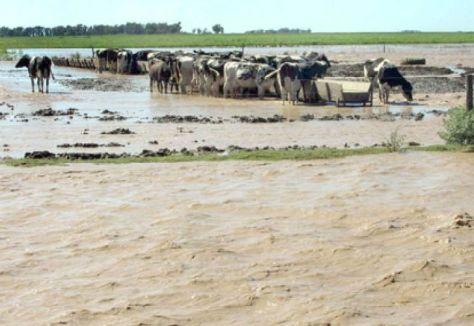 inundación 2016
