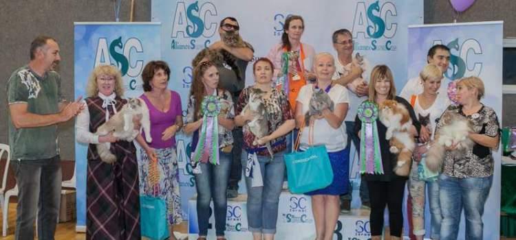 SuperCats-IL team