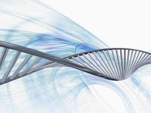 Генетика мутаций кошек