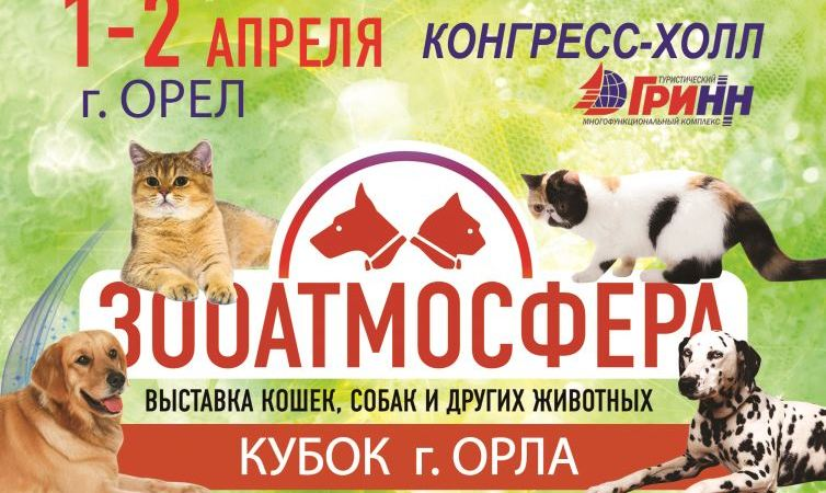 Кубок Орла - праздник для всех