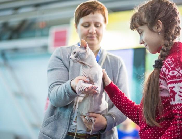 Елена Мартынова  предоставляет возможность пощупать сфинкса