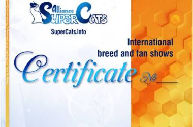 asc-rating-210425