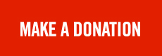Donate to Network For Animals