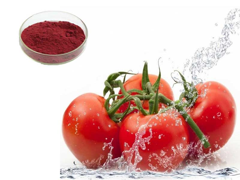 Supercritical co2 extraction of lycopene