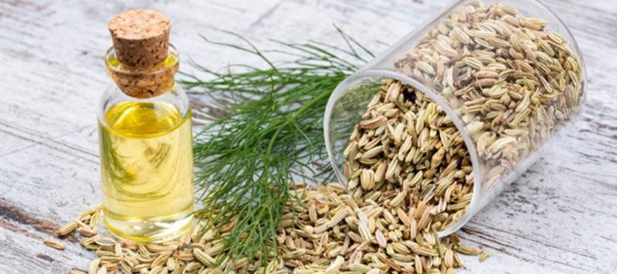 Supercritical CO2 extraction of cumin essential oil