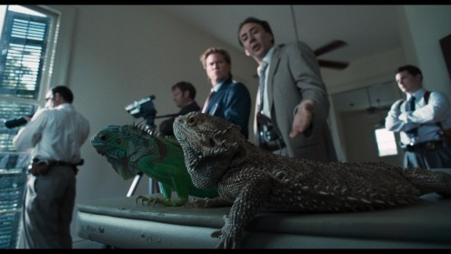 """""""What are these f@#$-in' iguanas doing on my coffee table?"""""""