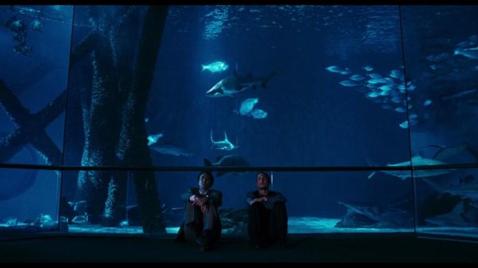 """You think fish have dreams?"""