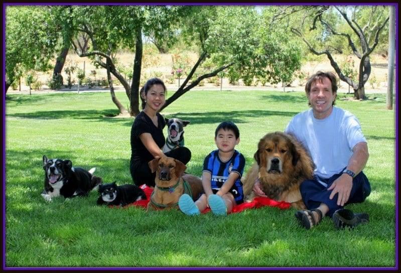 california dog trainer