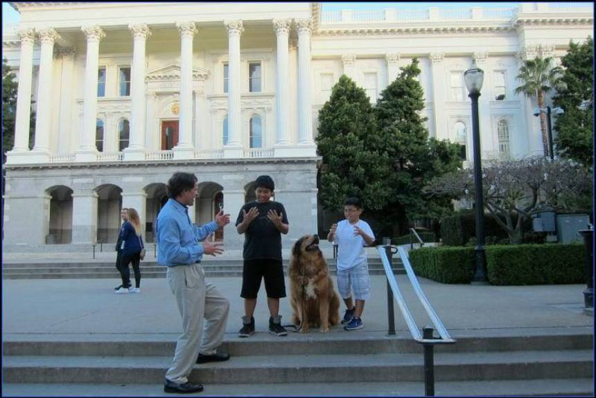 highly recognized as the best dog boot camp in sacramento