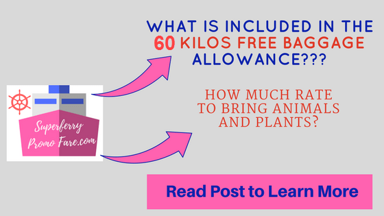 2go baggage allowance free