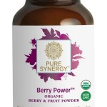 The Synergy Company Berry Power 150 Gram