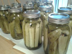 My Very First Canned Pickles!