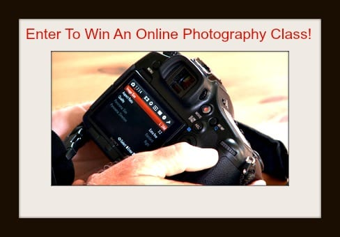 Enter to Win an Online Photography Class