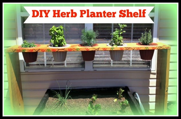 DIY Herb Planter Shelf