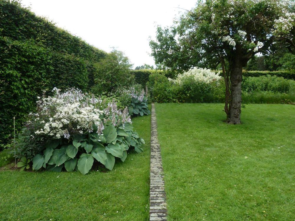 Oudolf's Gardening Inspiration (3/6)