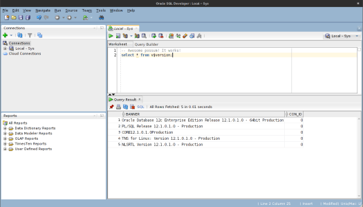 Oracle SQL Developer : Local - Sys_009