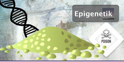 Epigenetik - Paleo nutzen, denn unsere Umwelt macht uns...