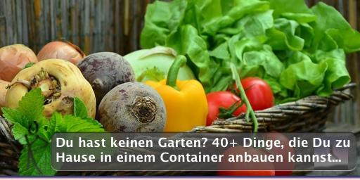 Du hast keinen Garten? 40+ Dinge, die Du zu Hause in einem Container anbauen kannst...