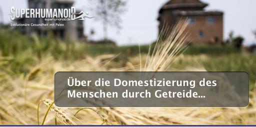 Domestizierung des Menschen durch Getreide bzw. Weizen