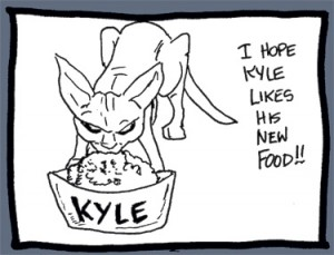 Kyle eats from his dish