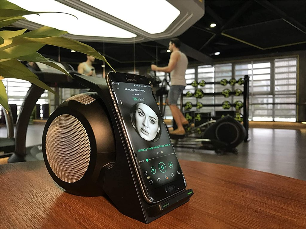 Censhi Bluetooth Speaker and Wireless Charger