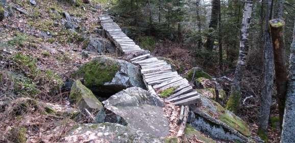 Mt Godfrey Bike Trail Route