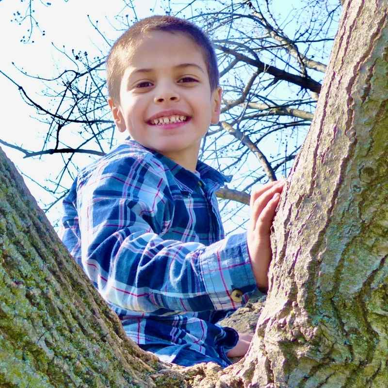 A four-year-old boy sits in a tree with a smile