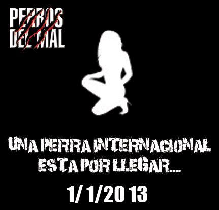 ¿Quién será la nueva Perra del Mal que llegará este 1ro. de enero de 2013? / Imagen by Producciones Perros del Mal en Facebook