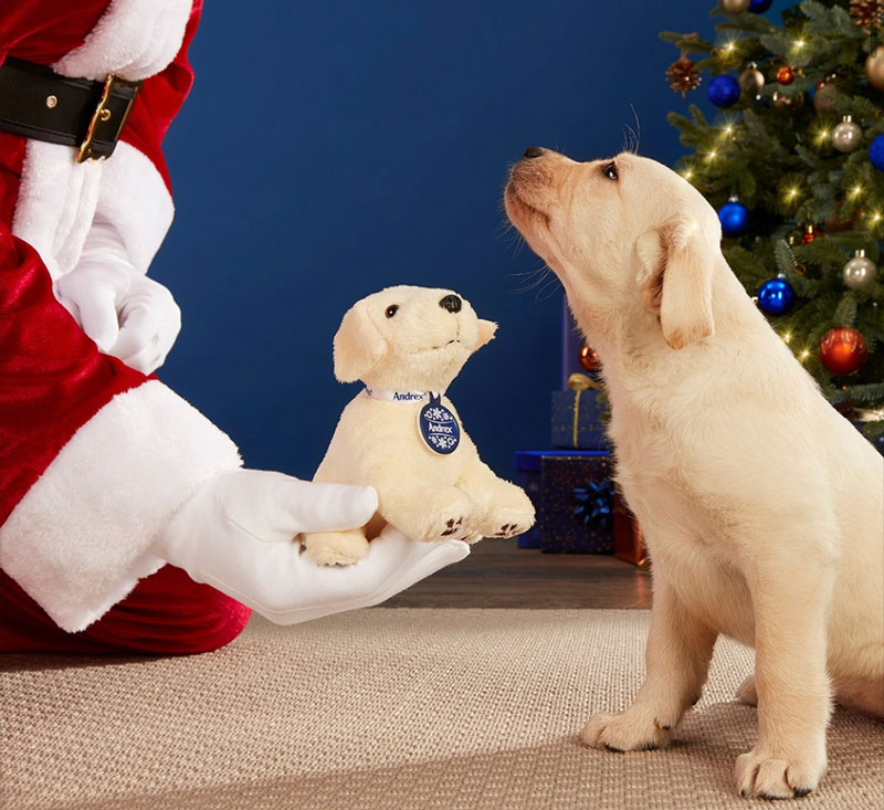 Win Andrex Puppies