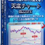 『天底チャート 株225FX』投資の穴目?