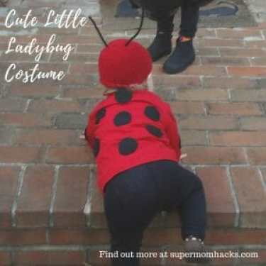 Diy halloween costumes cute little ladybug super mom hacks what is cuter than a little halloween ladybug a little ladybug costume you made yourself solutioingenieria Images